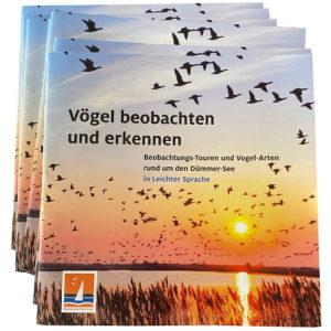 Vögel beobachten am Dümmer-See – Wanderführer in Leichter Sprache
